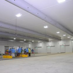 cold storage manufacturers